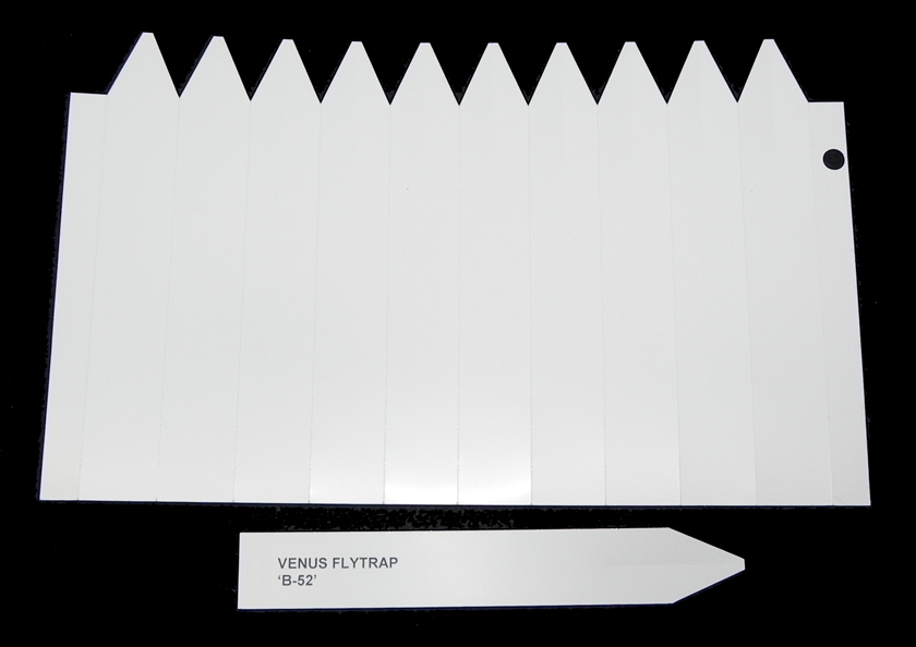 graphic regarding Printable Plant Labels named 6.75-inch white PRINTABLE plant labels - sheet of 10